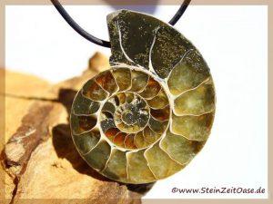 Ammonit XXXL Schmuckstein gebohrt