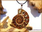Ammonit XXXL Schmuckstein an Silberöse