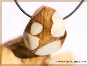 Peanutwood (versteinertes Holz) Trommelstein gebohrt