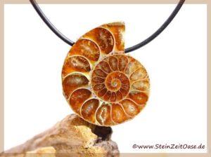Ammonit Schmuckstein gebohrt